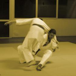 npng-judo-30nov15-yann-st geramin 1  (7)